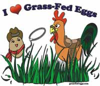 Grass-fed Eggs