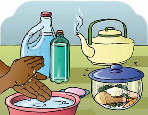 Kitchen Hygiene & Food Safety | www Indian-Cooking Info
